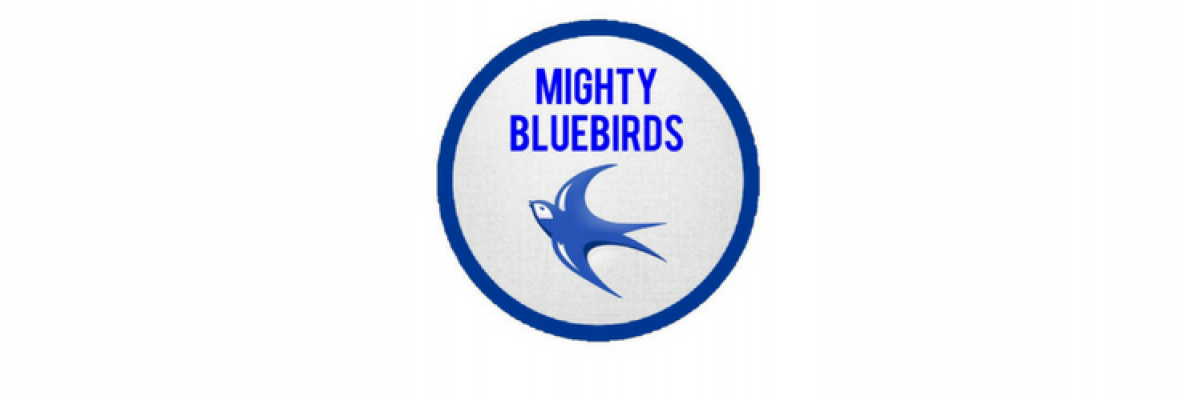 Mighty Bluebirds